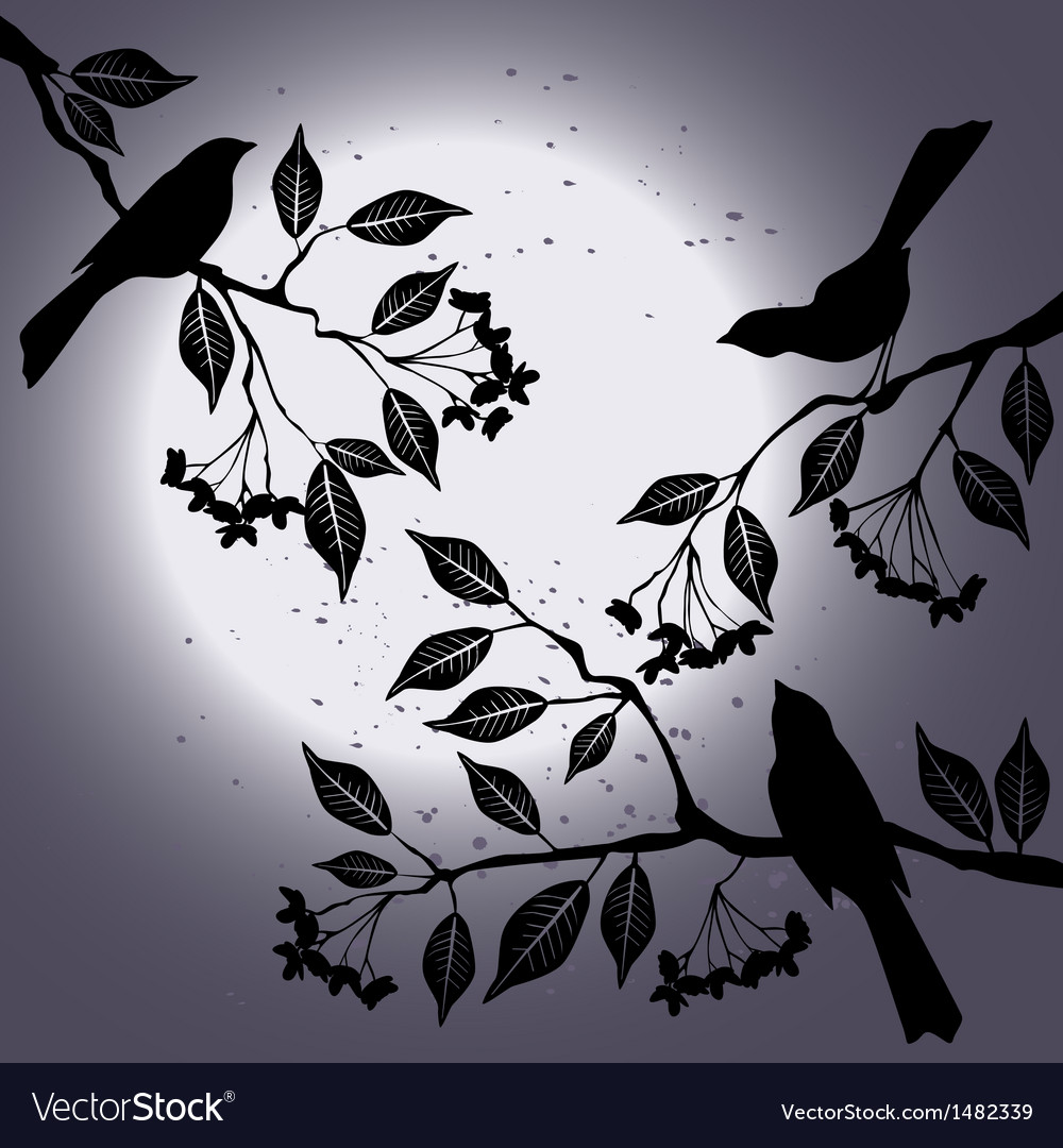 Birds on the branch during summers night vector | Price: 1 Credit (USD $1)