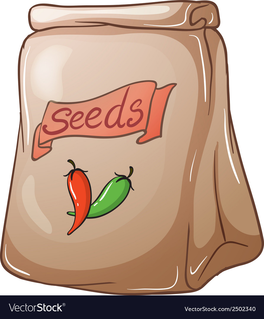 A pack of chili seeds vector | Price: 1 Credit (USD $1)