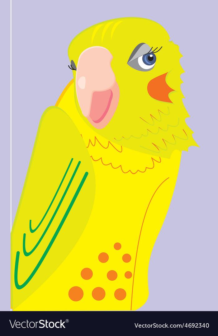 Parrot 3c vector | Price: 1 Credit (USD $1)