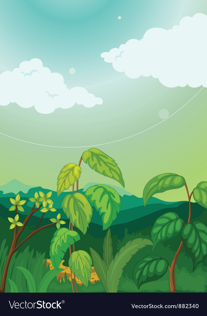Plant background vector | Price: 3 Credit (USD $3)