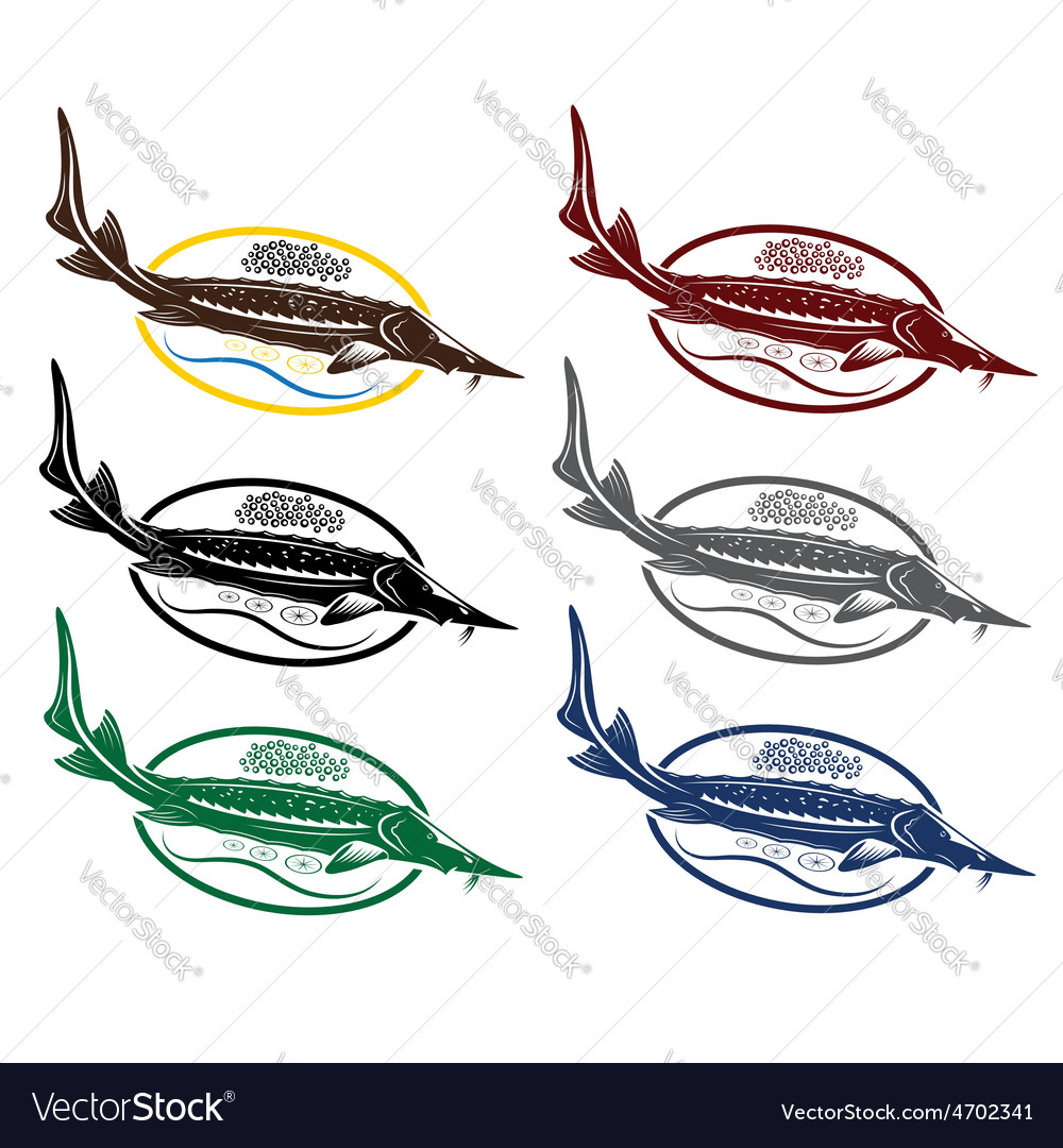 Sturgeon fish with caviar and lemon on plate vector | Price: 1 Credit (USD $1)