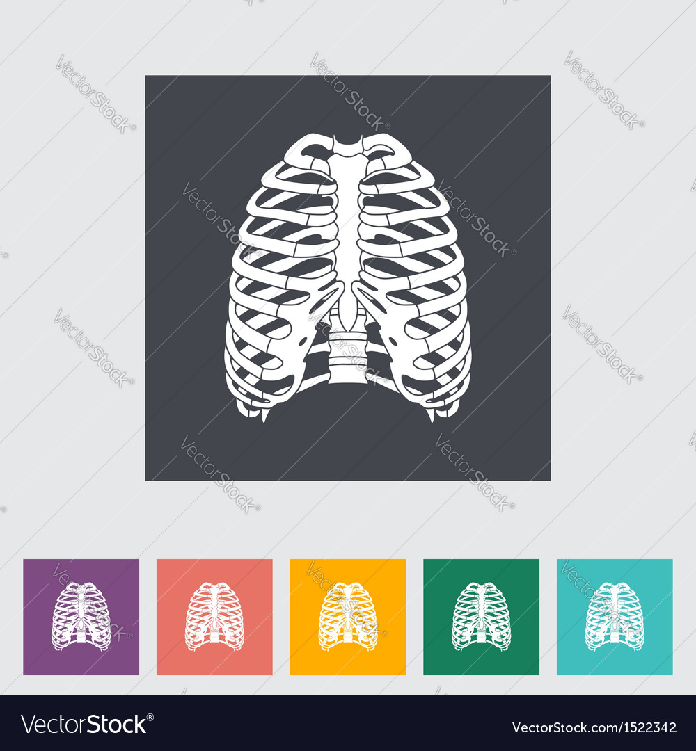 Human thorax vector | Price: 1 Credit (USD $1)