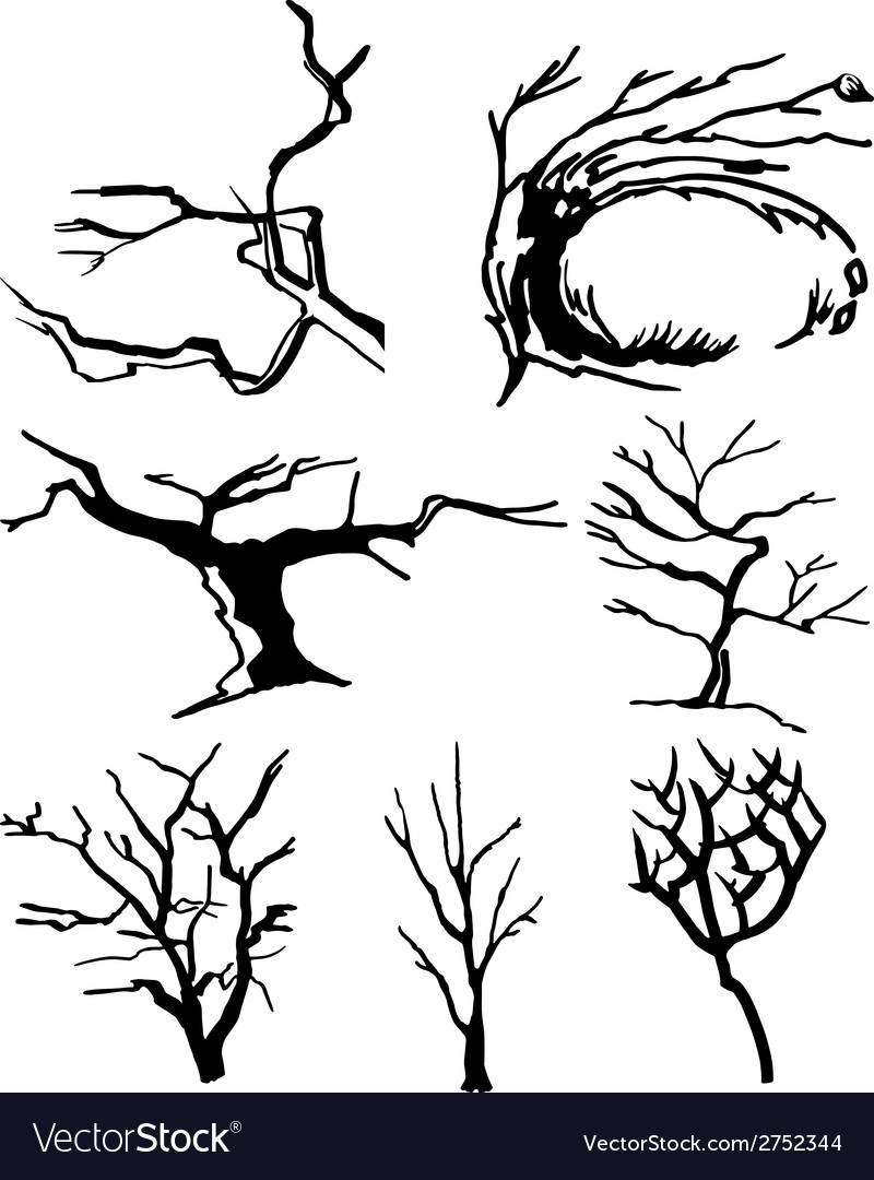 Collection of tree silhouettes vector | Price: 1 Credit (USD $1)