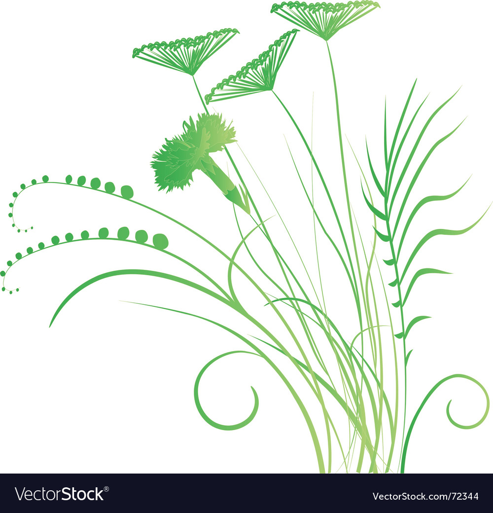 Grassy roots vector | Price: 1 Credit (USD $1)