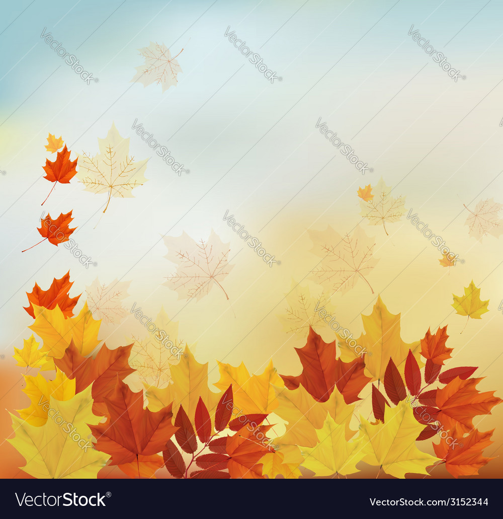 Vintage autumn background with colorful leaves vector | Price: 1 Credit (USD $1)