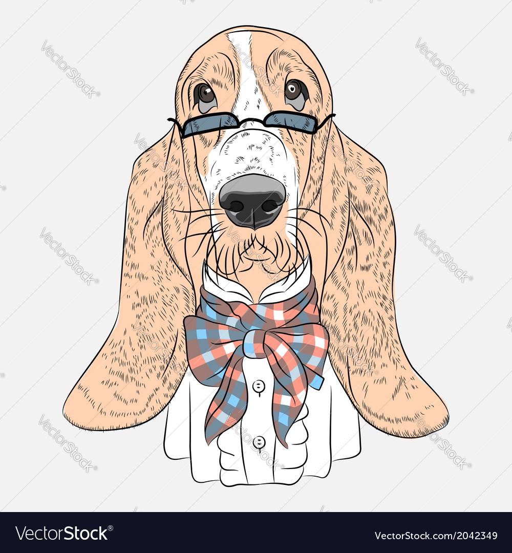 Hipster dog basset hound breed vector | Price: 1 Credit (USD $1)