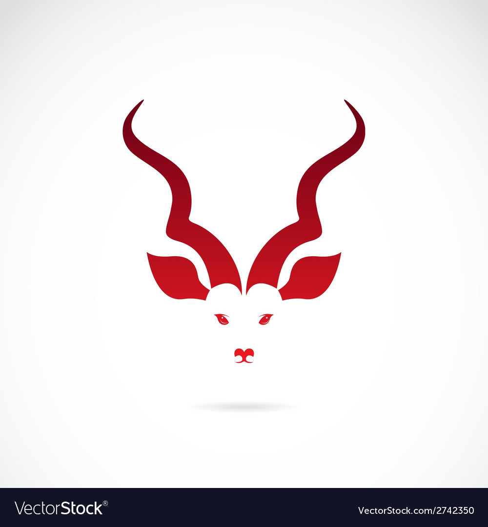 Image of an kudu antelope horns vector | Price: 1 Credit (USD $1)