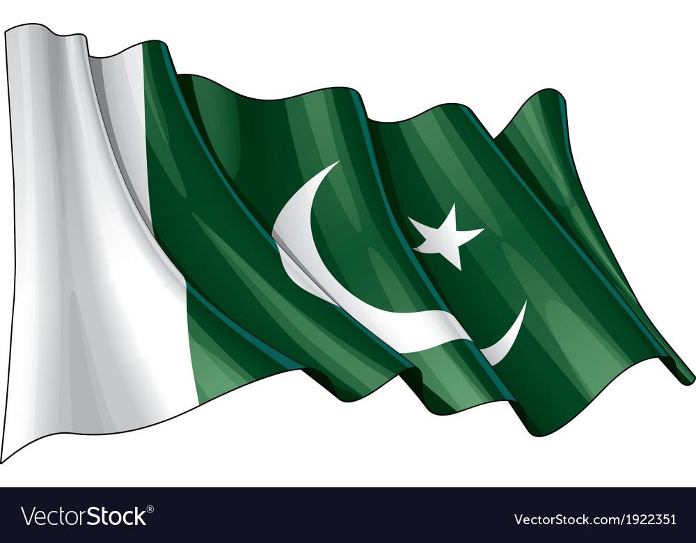 Pakistan flag vector   Price: 1 Credit (USD $1)