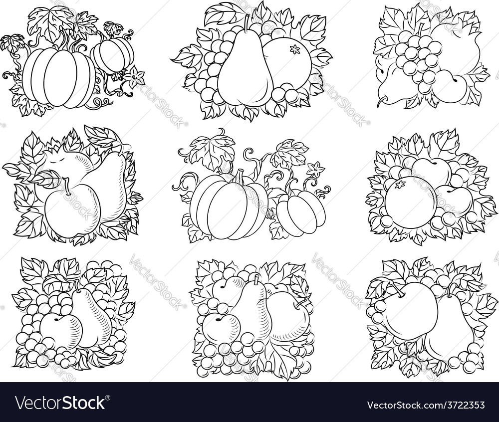 Fruit and vegetable compositions in retro sketch vector | Price: 1 Credit (USD $1)