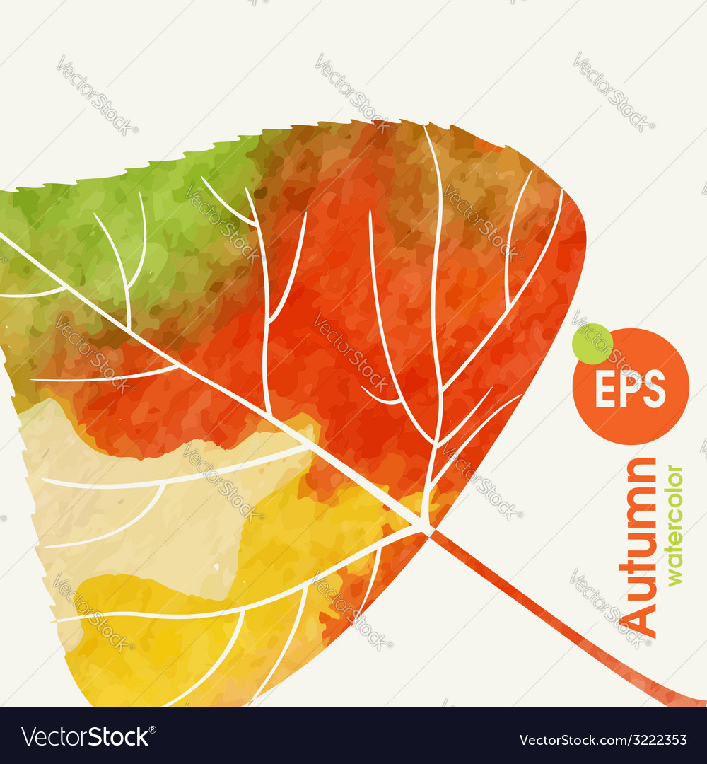 Simple autumn background vector   Price: 1 Credit (USD $1)