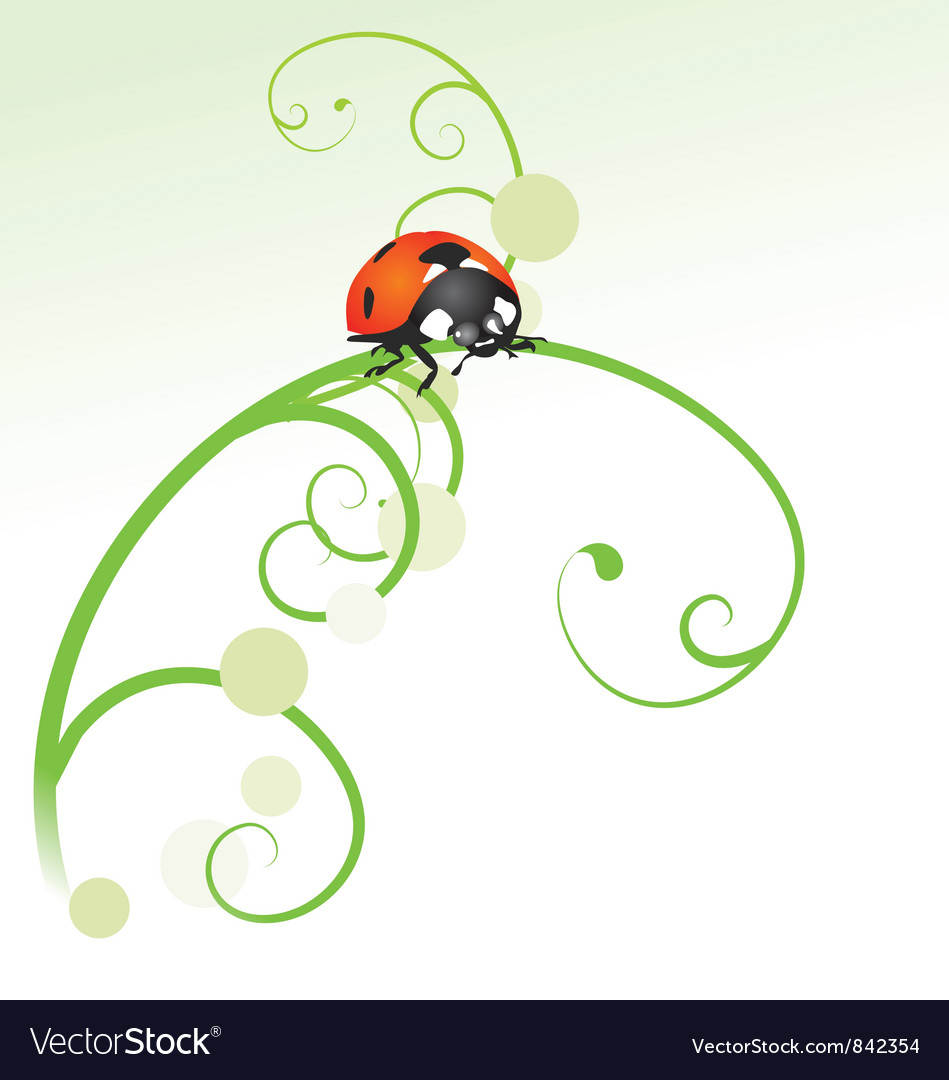 Ladybird curves vector | Price: 1 Credit (USD $1)