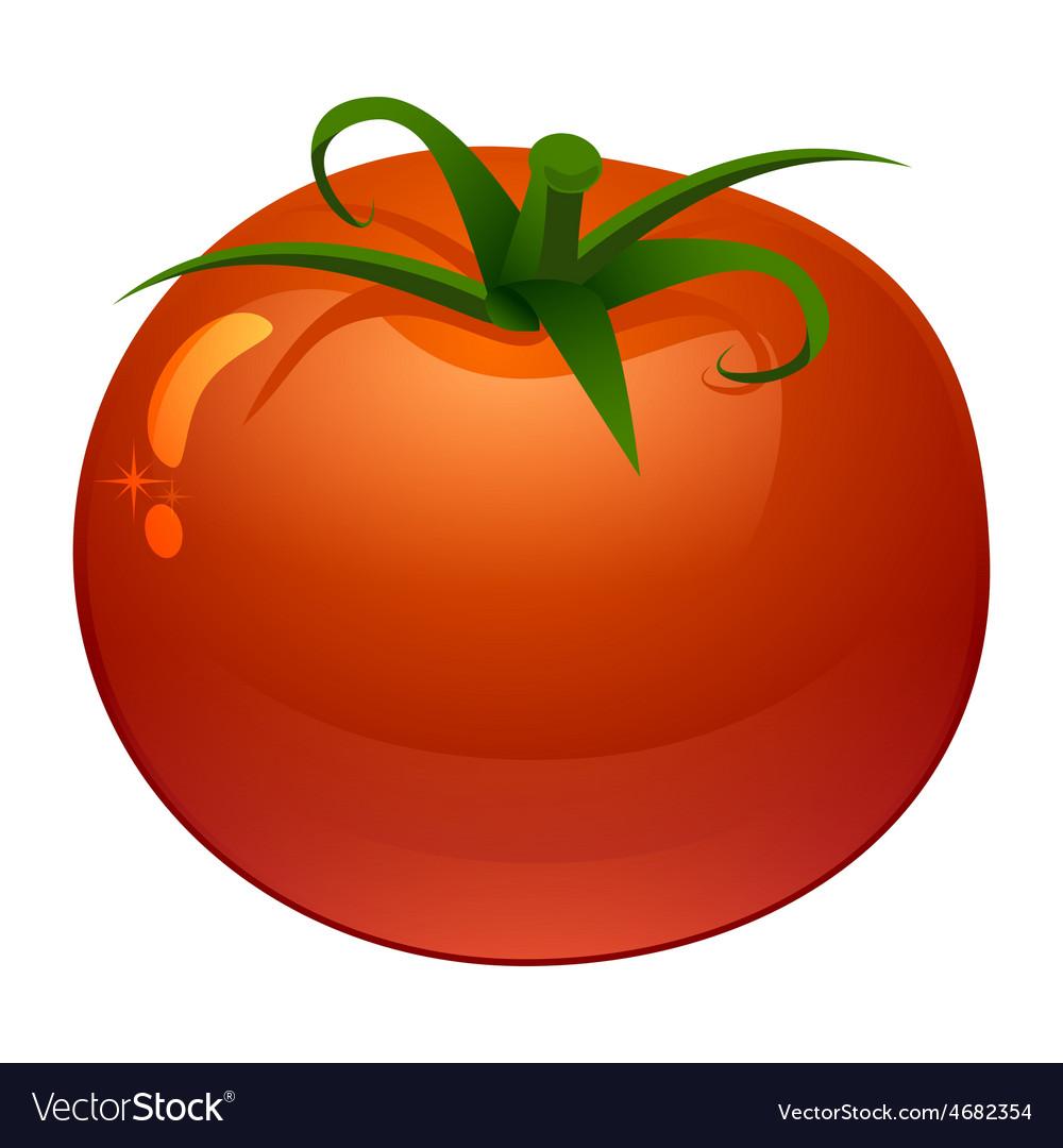 Stylized of fresh ripe tomato vector | Price: 1 Credit (USD $1)
