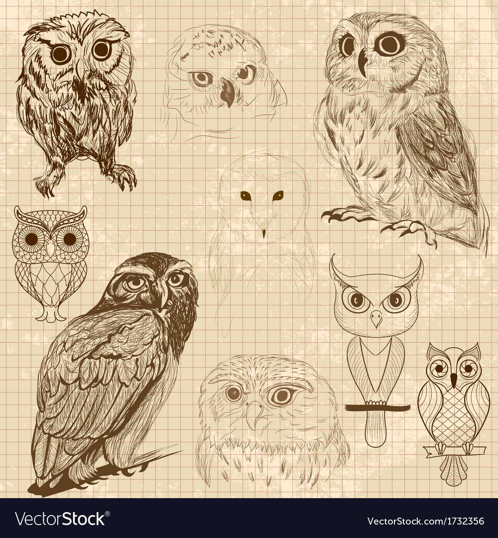 Set of retro owl sketches vector | Price: 1 Credit (USD $1)