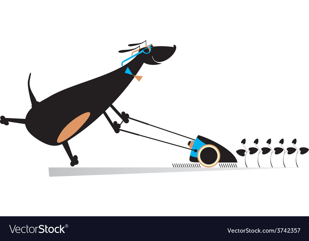 Dog lawnmower vector | Price: 1 Credit (USD $1)