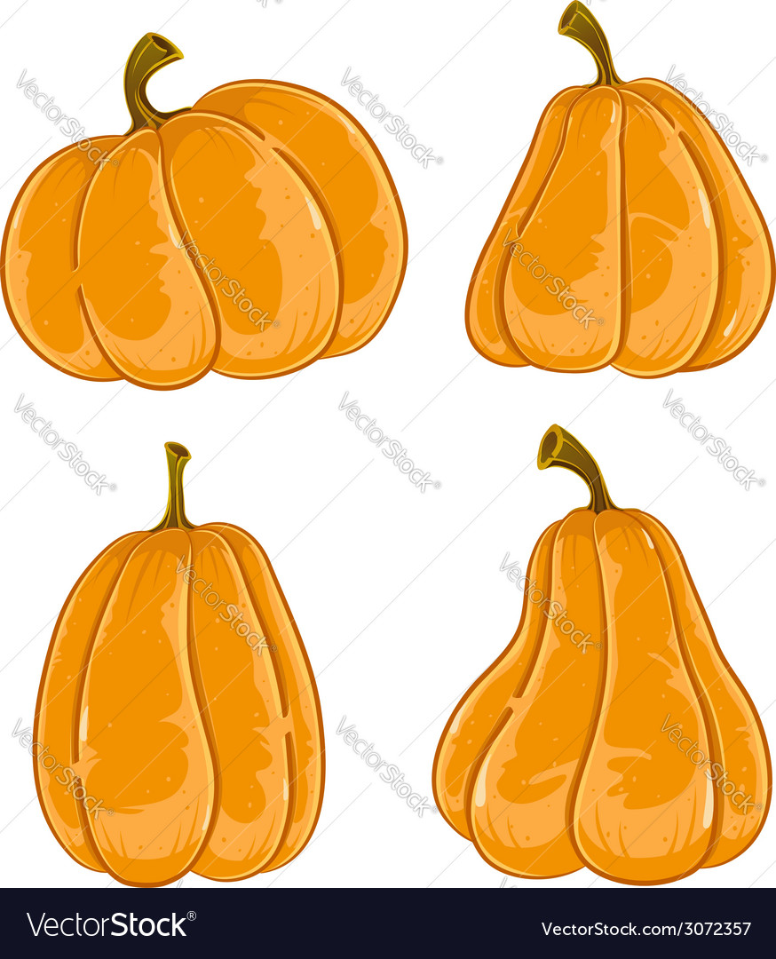 Hand drawn pumpkins vector | Price: 1 Credit (USD $1)
