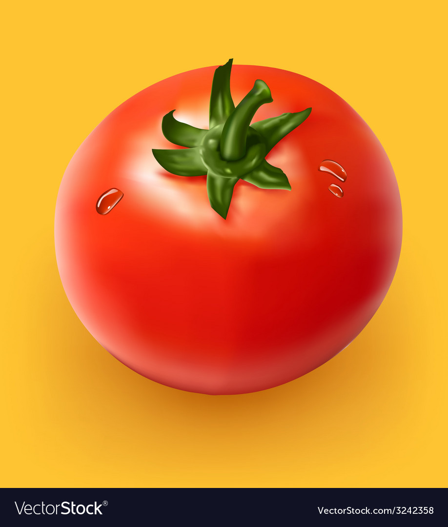 Figure ripe tomato on yellow background vector   Price: 3 Credit (USD $3)