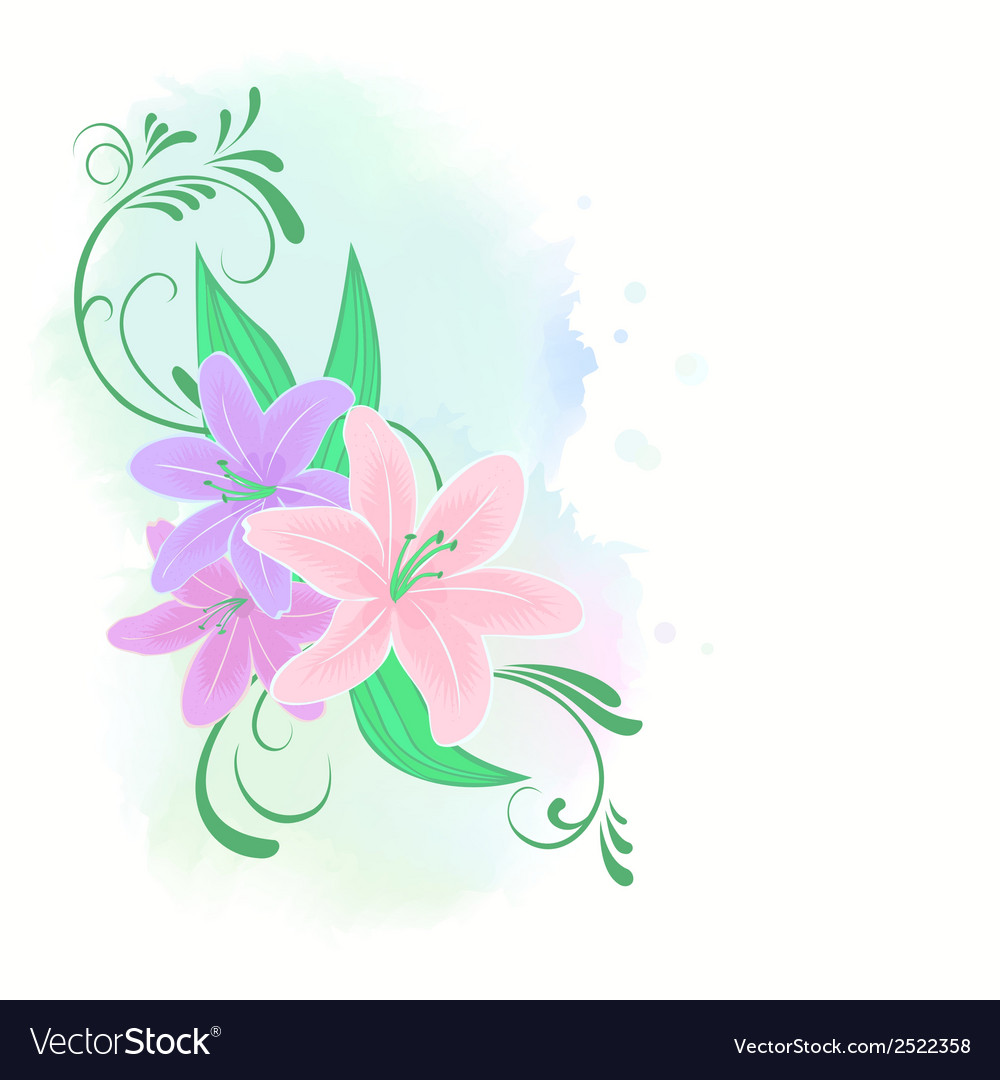 Lilies flowers vector | Price: 1 Credit (USD $1)