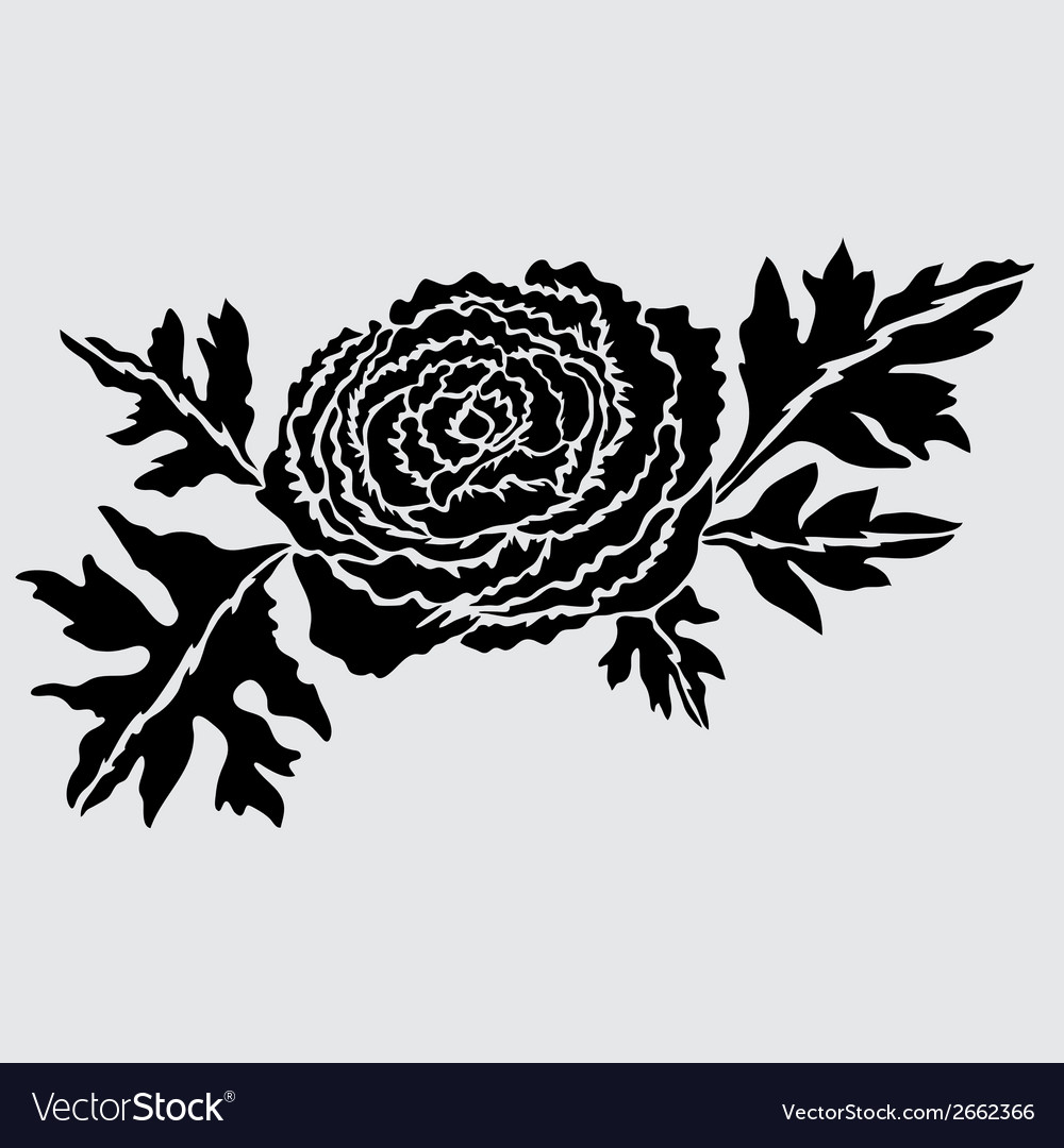 Decorative ranunculus vector | Price: 1 Credit (USD $1)