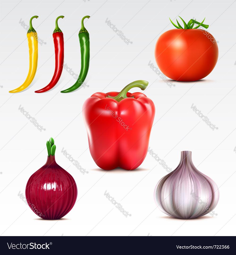 Vegetables vector | Price: 3 Credit (USD $3)