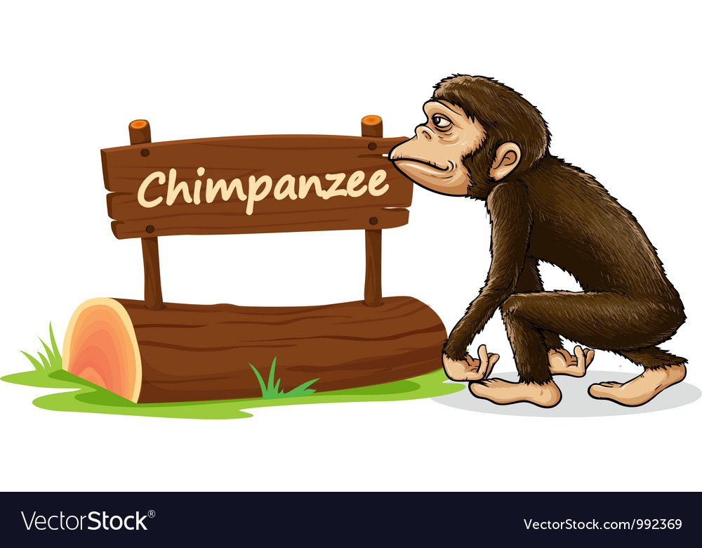Cartoon zoo chimpanzee sign vector | Price: 1 Credit (USD $1)
