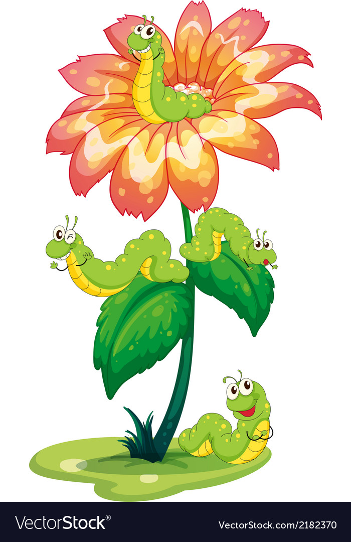 A big flower with worms vector | Price: 1 Credit (USD $1)