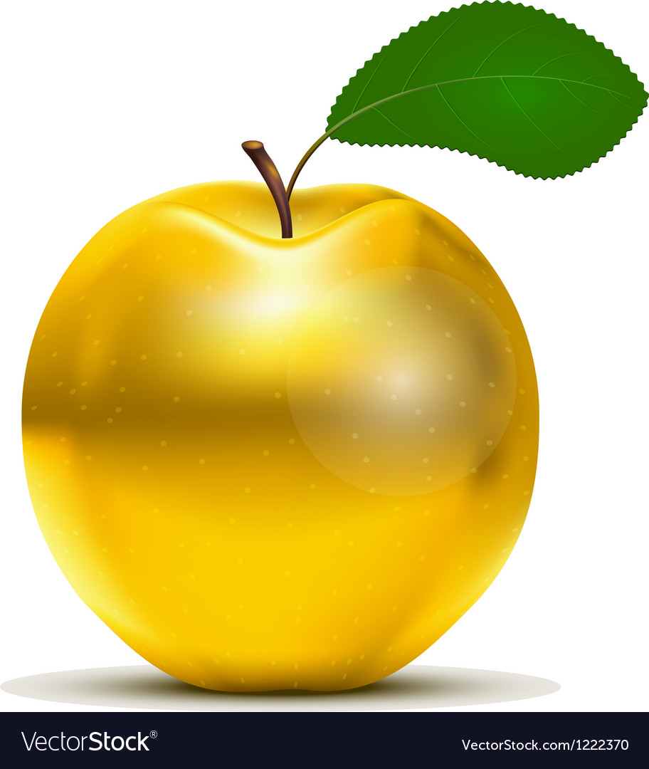 Golden apple vector | Price: 3 Credit (USD $3)