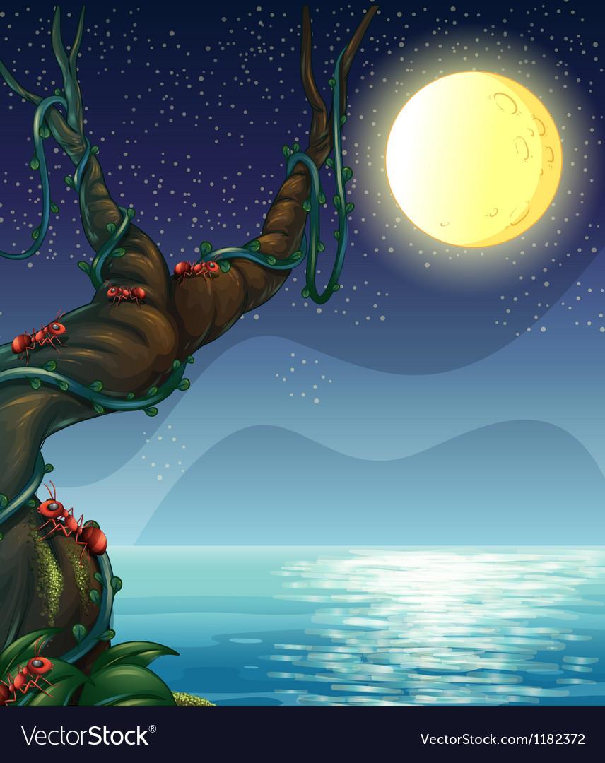 Moonlight riverside scene vector | Price: 1 Credit (USD $1)