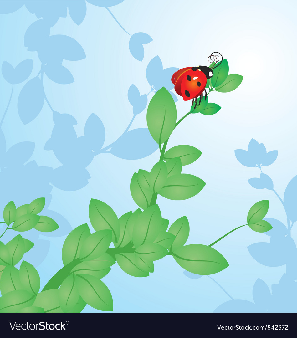 Red ladybird on the tree branch vector | Price: 1 Credit (USD $1)