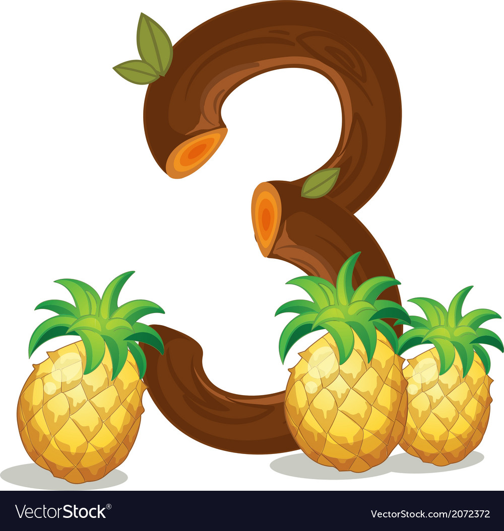 Three pineapples vector | Price: 1 Credit (USD $1)