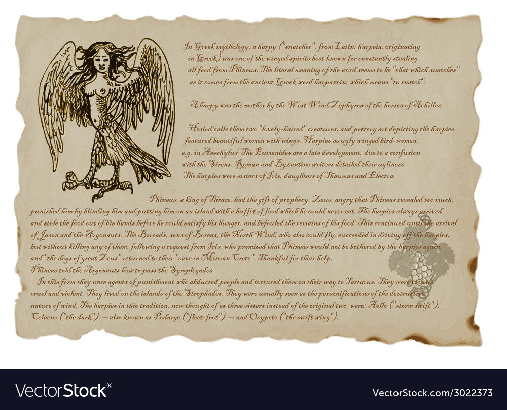 Creature or mystical monster harpy vector | Price: 1 Credit (USD $1)