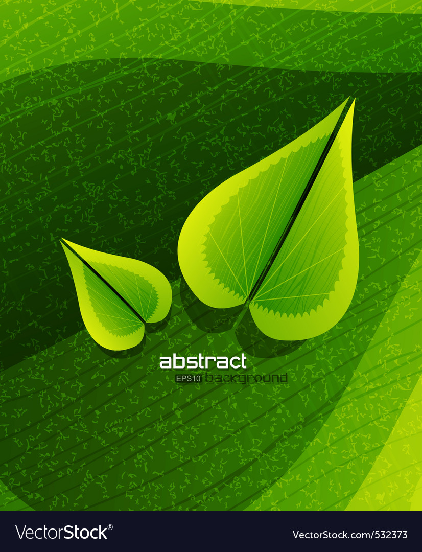 Evergreen nature vector | Price: 1 Credit (USD $1)