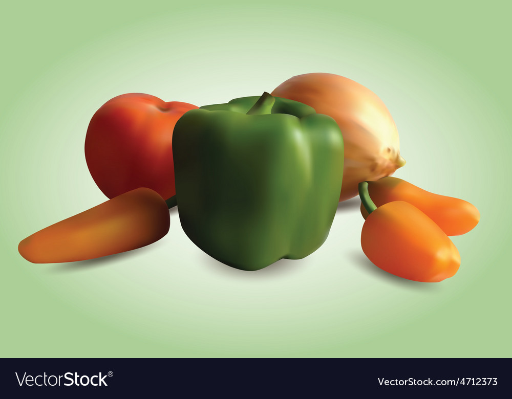 Vegetable still life vector
