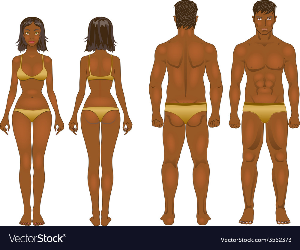 Young woman and guy in underwear body templates vector | Price: 1 Credit (USD $1)