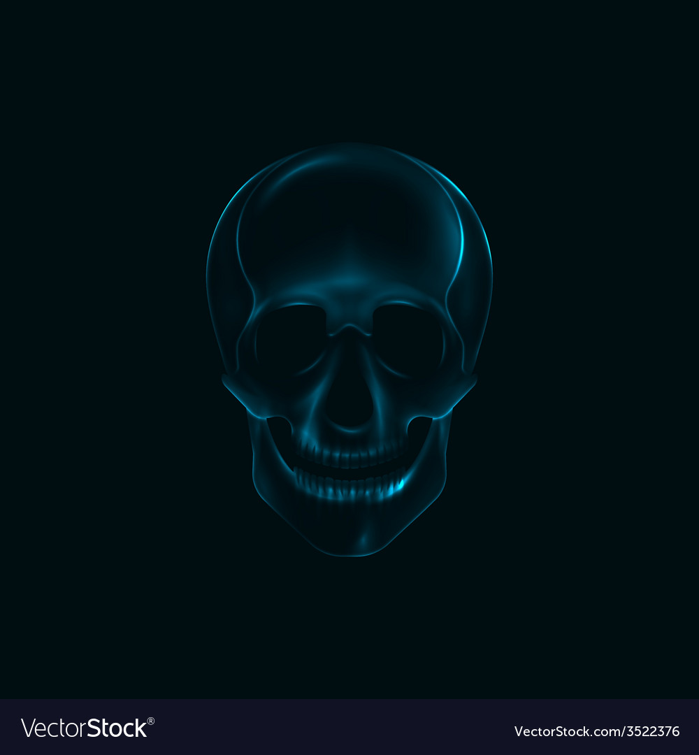 A human skull x-ray print medical conce vector | Price: 1 Credit (USD $1)