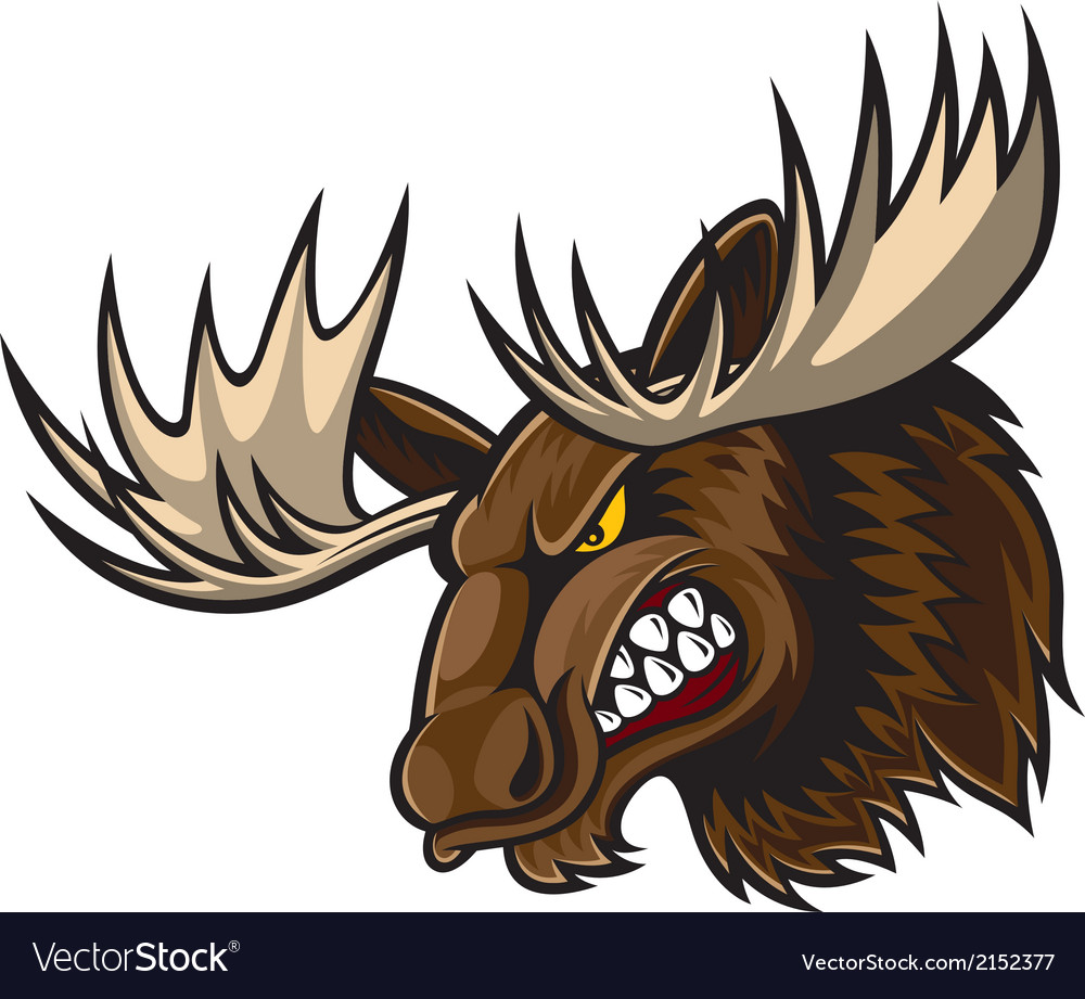Angry moose head vector | Price: 3 Credit (USD $3)