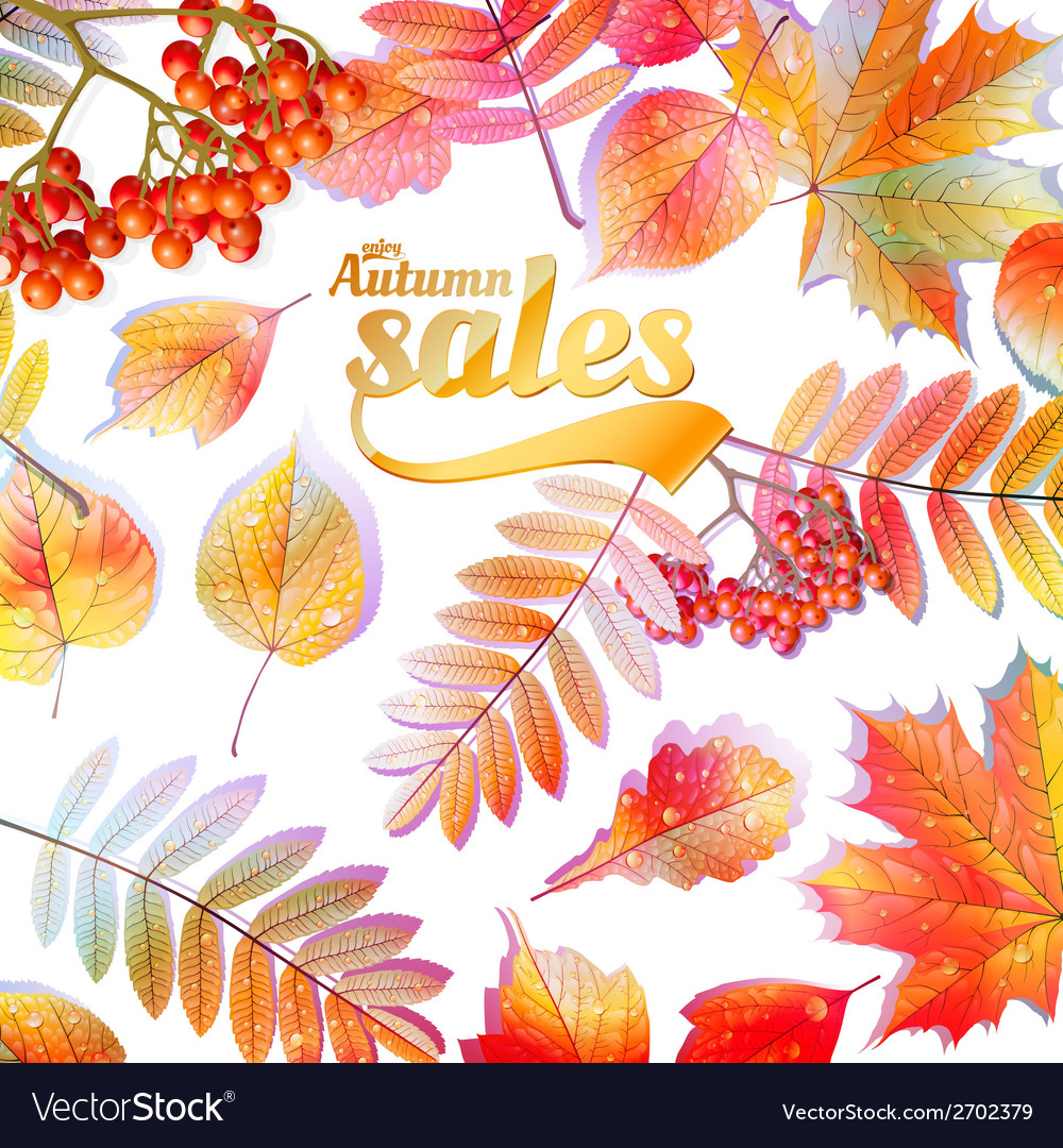 Autumn calligraphy sale on detailed leafs vector | Price: 1 Credit (USD $1)