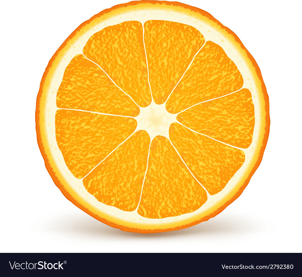 Fresh ripe orange vector | Price: 1 Credit (USD $1)