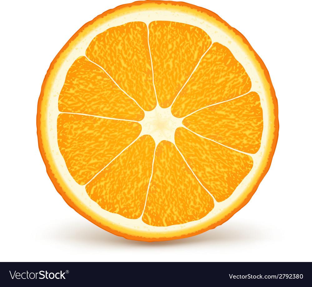 Fresh ripe orange vector | Price: 1 Credit (USD $1)