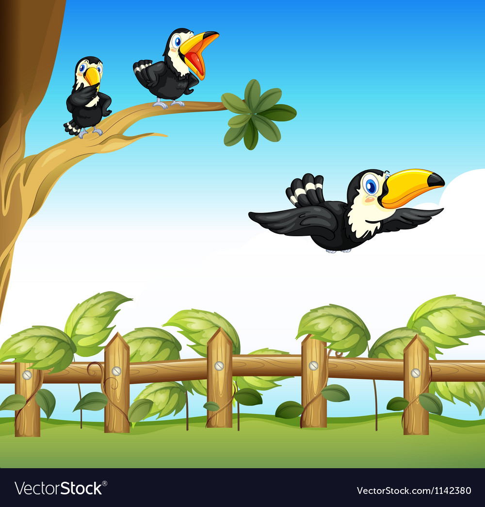 The three birds vector | Price: 1 Credit (USD $1)