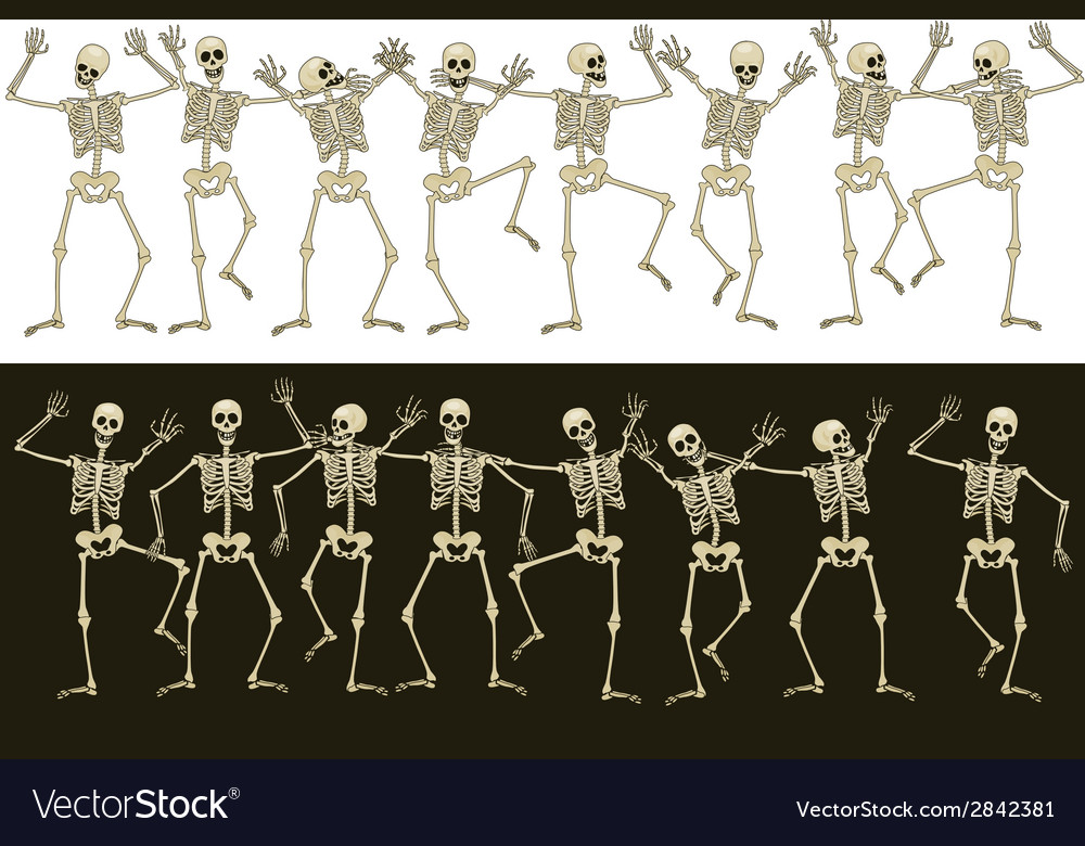 Fun skeletons vector | Price: 1 Credit (USD $1)