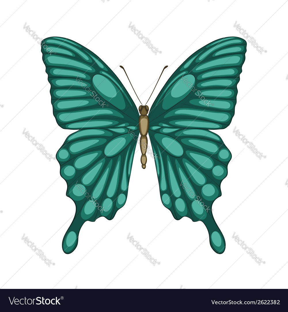 Butterfly isolated on white with watercolor effect vector | Price: 1 Credit (USD $1)