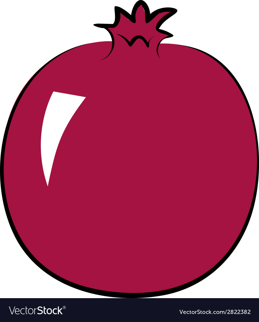 Pomegranate vector | Price: 1 Credit (USD $1)