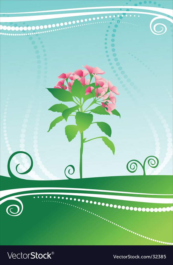 Beauty flower vector | Price: 1 Credit (USD $1)