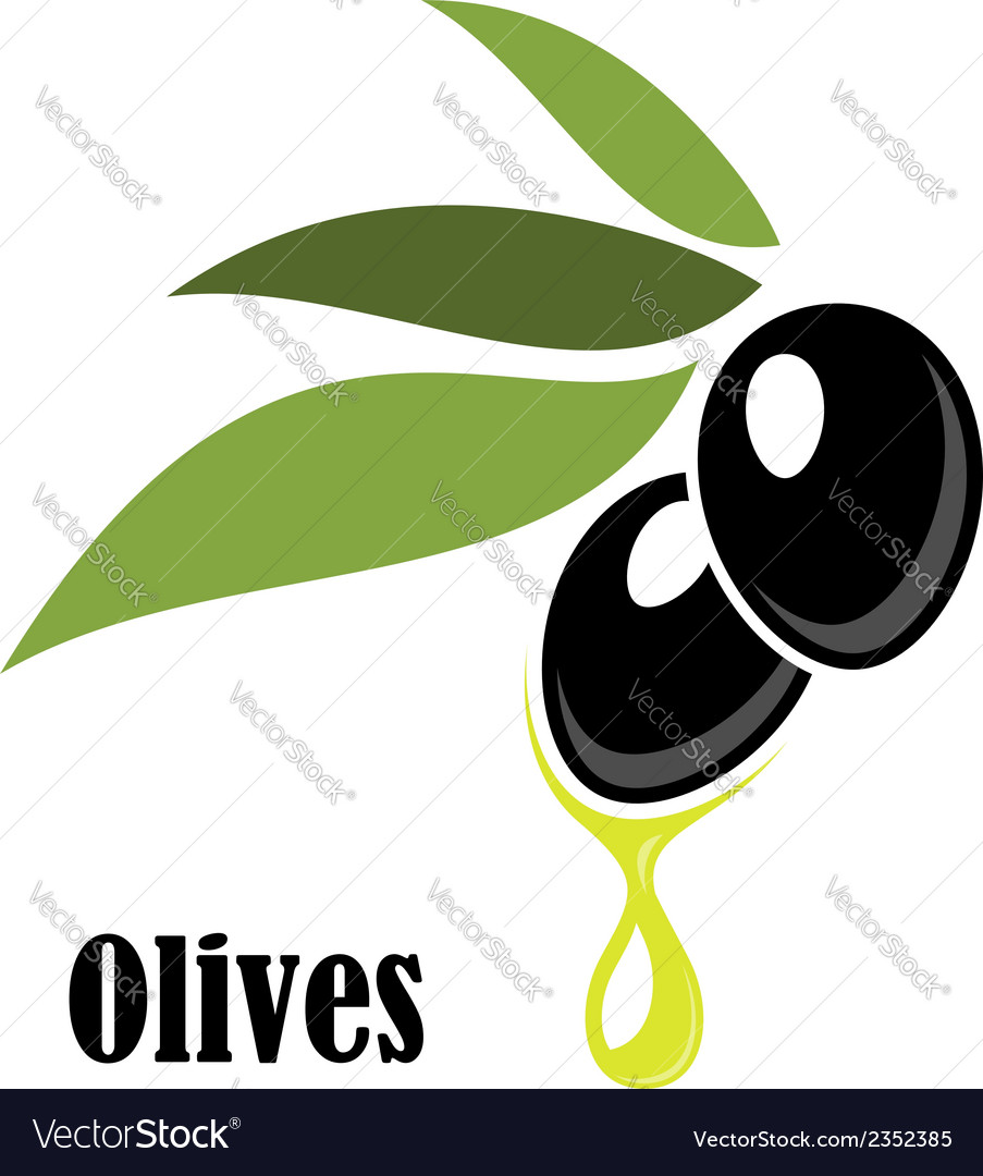 Ripe black olives on a leafy twig with oil vector | Price: 1 Credit (USD $1)