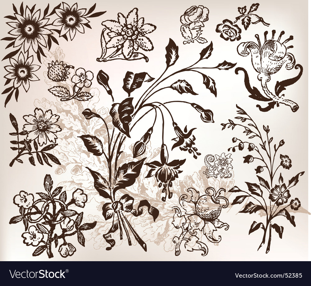Vintage floral vector | Price: 1 Credit (USD $1)