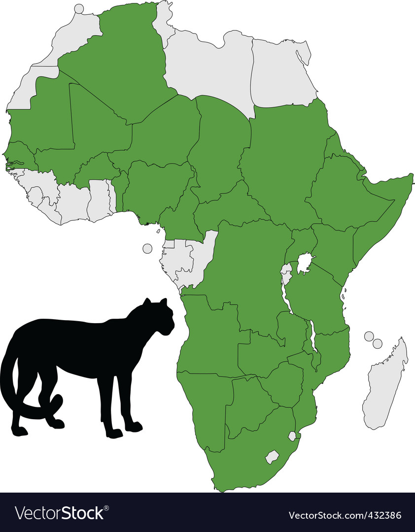 Cheetah distribution africa vector | Price: 1 Credit (USD $1)