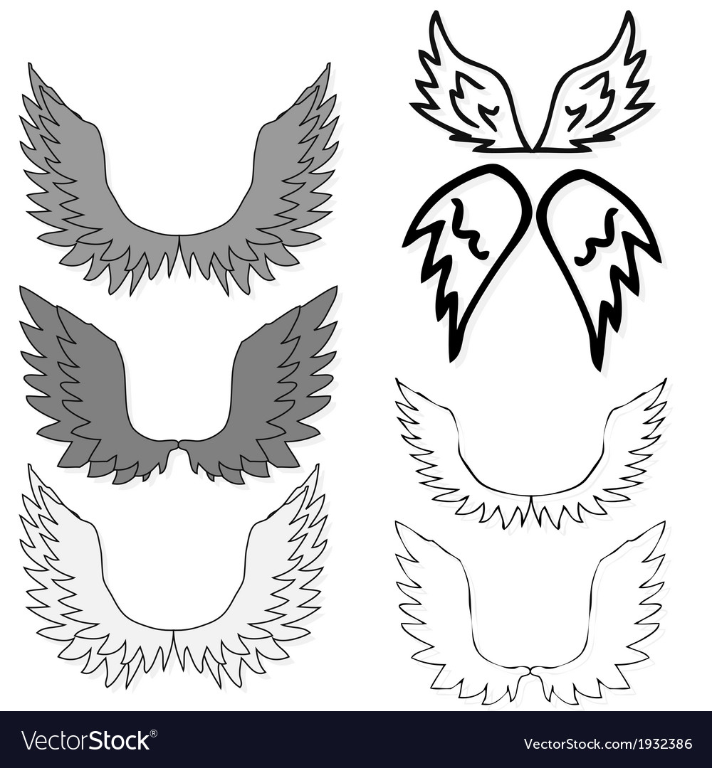 Set of bird wings for heraldry design isolated on vector | Price: 1 Credit (USD $1)