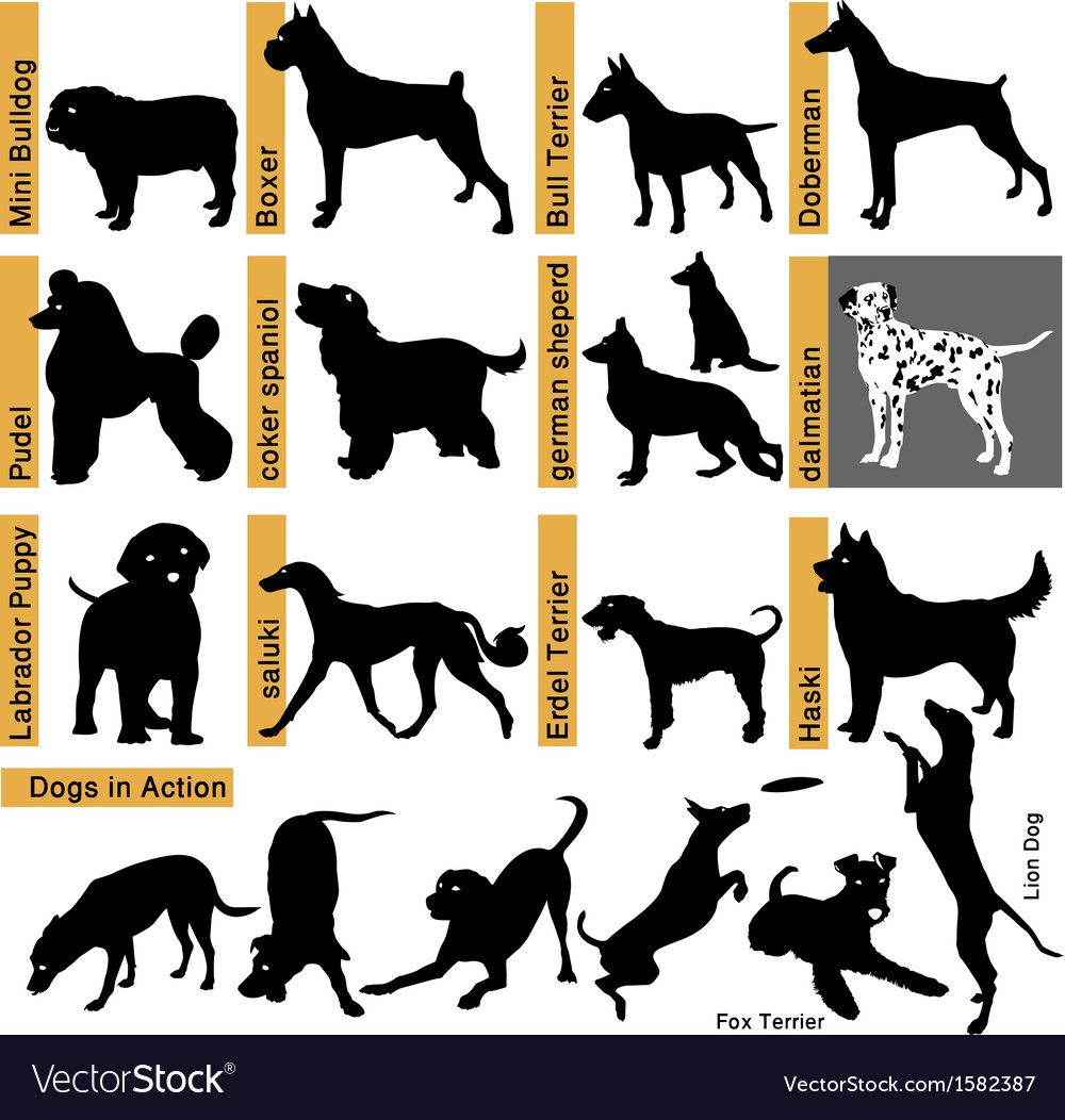 Dogs races vector | Price: 1 Credit (USD $1)