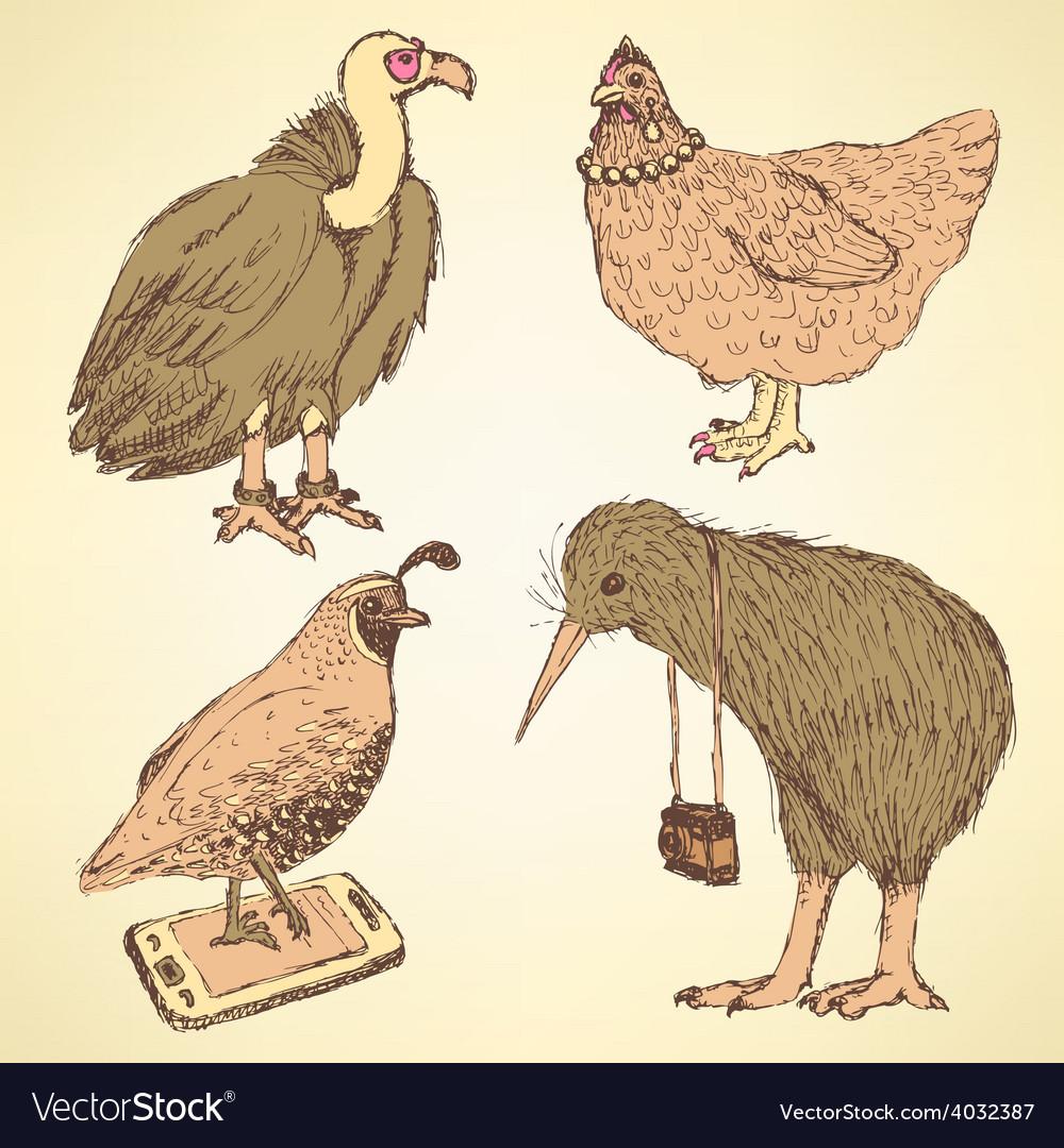 Sketch fancy birds in vintage style vector | Price: 1 Credit (USD $1)