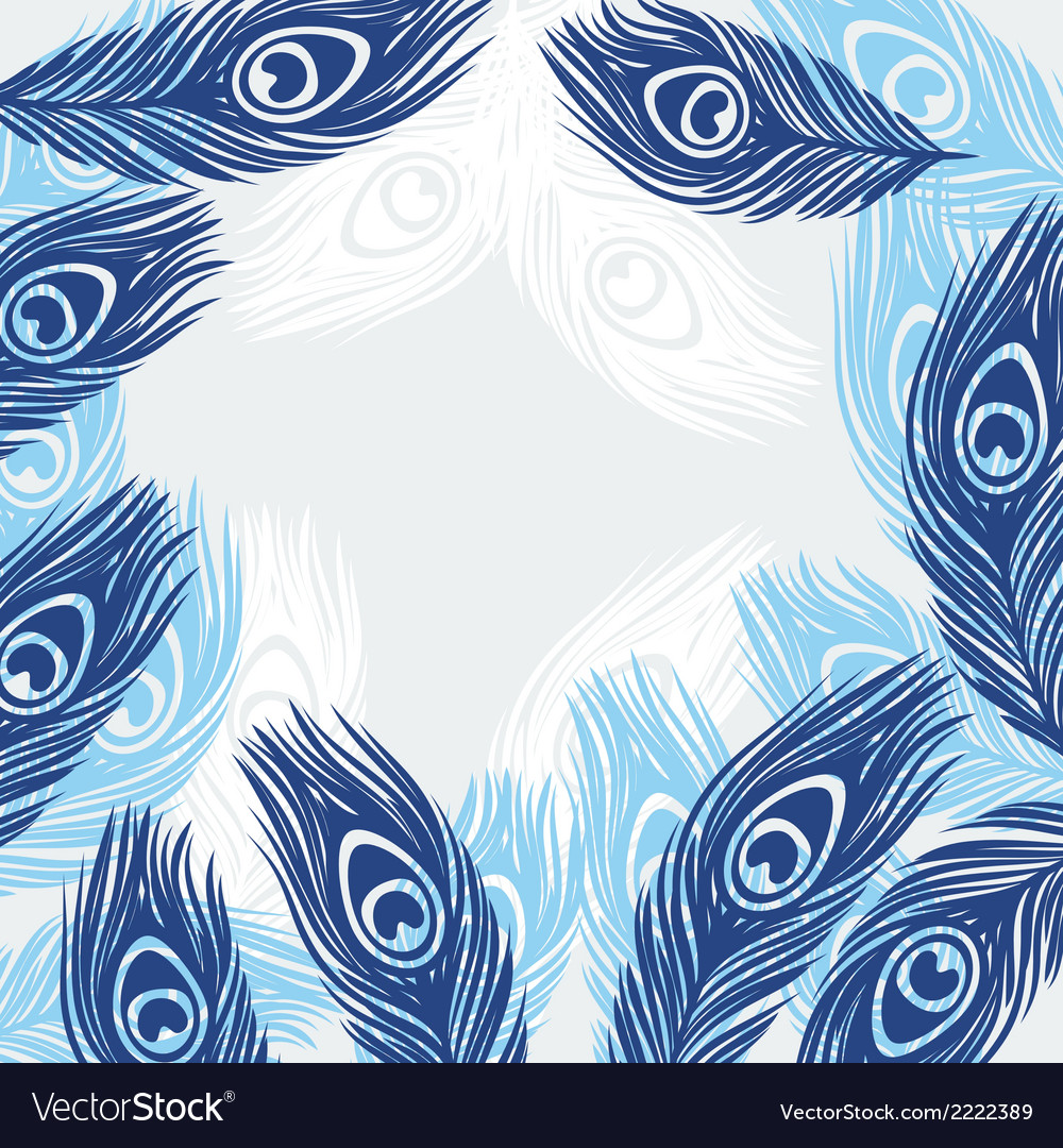 Design background with hand drawn feathers peacock vector | Price: 1 Credit (USD $1)